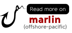 Complete information on sport fishing for Marlin in Costa Rica.