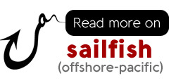 Fish for sailfish in the offshore pacific region of Costa Rica, learn more about sail fishing