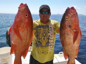 Snapper caught off of the Gulf of Nicoya on a fishing charter