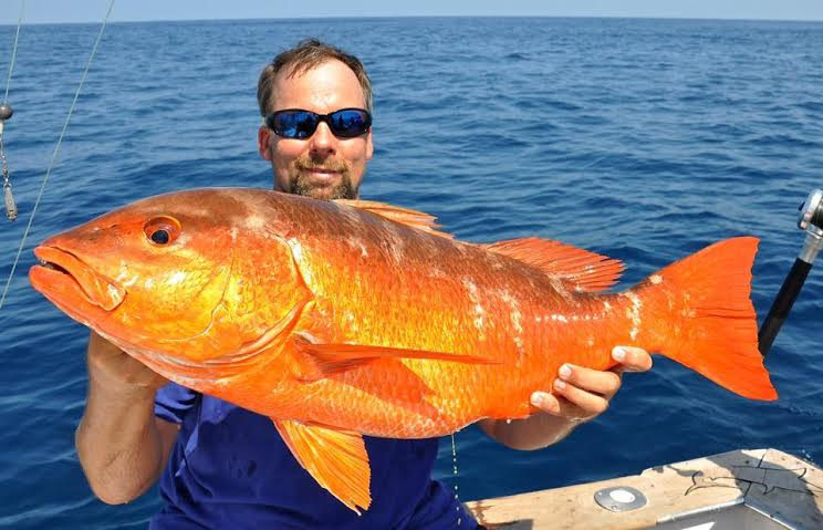 Snapper fishing and sport fishing while in Costa Rica
