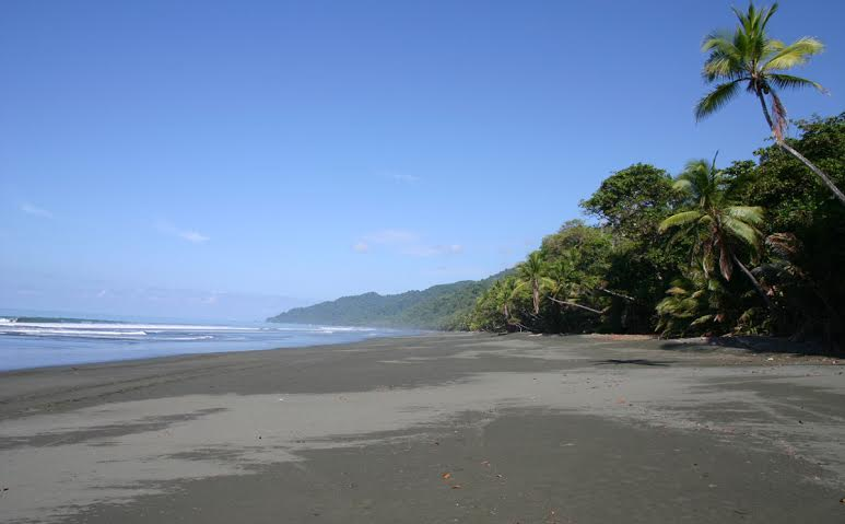 The best way to fish in the Dominical area is to make the trip to Quepos.