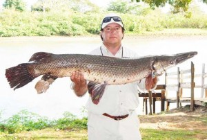 While not a food fish, Gar are a great sport fish and fun to catch.