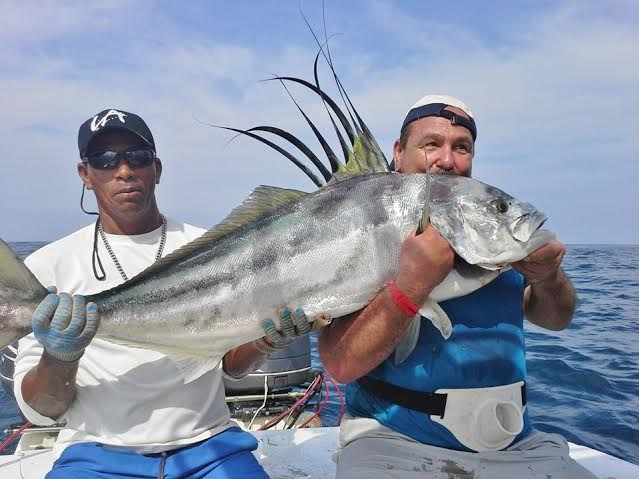 Fish for huge roosterfish while in Costa Rica